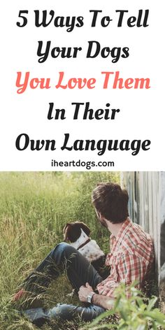 Show your dog you care by doing these!