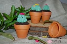 some cupcake ideas for a gardening party