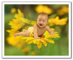 end New Baby Flowers today! Same day delivery to. Cute Kids Photography, Bokeh Photography, Photography Gallery, Infant Photography, New Baby Flowers, Yellow Flowers, Flowers Today, Very Cute Baby, Baby Love