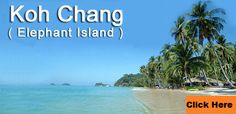 Here is Professional Yoga Teacher Training program. This is a practical and theoretical yoga teacher training course designed to make you a confident and effective Yoga Teacher. Yoga Teacher Training Course, Koh Chang, Yoga School, Koh Tao, Training Programs, Thailand, Pattaya, Island, Beach