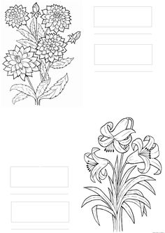 copic coloring (flowers)