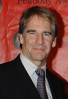 Scott Bakula - Wikipedia, the free encyclopedia Ncis New, Civil Rights Activists, Quantum Leap, Ncis Los Angeles, Writers And Poets, Celebs, Celebrities, Good Looking Men, Best Actor