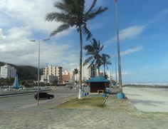 MONGAGUÁ - SÃO PAULO - BRAZIL - 2014/10/05