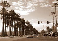 Santa Monica,California