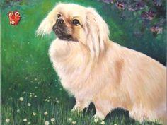 Tibetan Spaniel. Oil on canvas by Sasha Taylor