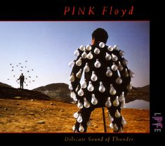 """""""Delicate Sound of Thunder"""" Pink Floyd album cover by Storm Thorgerson and Nick Marchant Album Pink Floyd, Art Pink Floyd, Pink Floyd Album Covers, Pink Floyd Live, Rock Album Covers, Storm Thorgerson, David Gilmour, Abbey Road, Lps"""
