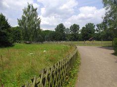Path through Wildpark