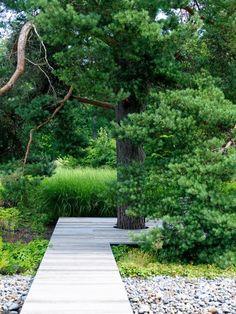 Träd som skuggar. Många tycker att gamla fruktträd och höga tallar är till besvär med fallfrukt och kottar. Tänk om! Träden utgör en stor del av trädgårdens personlighet. Höjden, formen och grenarna kan anpassas genom beskärning om de vuxit sig för stora. Här är tallen utropstecknet som med hjälp av trädäcket binds samman med uteplatsen framför. Varma dagar ger tallen skön skugga, då kan man ligga under den stora kronan och läsa eller titta på fåglar.