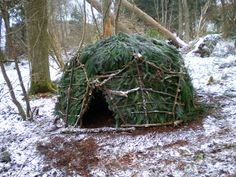 Blog about a guy who makes 100 different shelters using only materials he has on hand in the woods. Pretty cool! #veggiegoddess