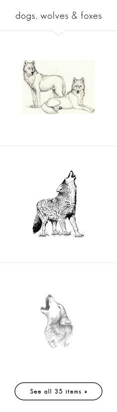 """""""dogs, wolves & foxes"""" by pantherinae on Polyvore featuring fillers, animals, drawings, art, wolf, sketches, doodles, scribble, saying and quotes"""