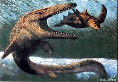 Mosasaurs!