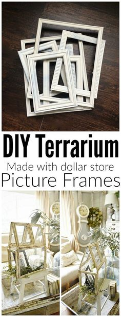 Super easy DIY terra