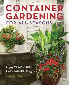 Container Gardening for All Seasons: Enjoy Year-Round Color with 101 Designs #containergardening