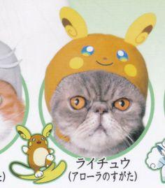 Vulpix Gashapon Japan Cutie Cat Cap Pokemon 2