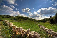 Pratoni in Lessinia. Le file di pietre segnao i confini dei vari possedimenti