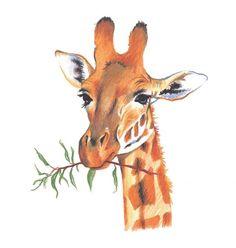 draw giraffe in colored pencil