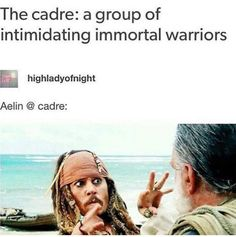 Aelin and the Cadre