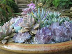 Here's a gardening trick that works: adding crystals to your container garden designs | Gardening with Confidence & Plants with Benefits with Helen Yoest