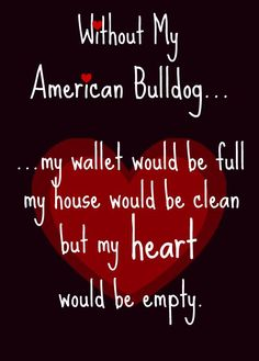 <3  #american #bulldogs #americanbulldogs