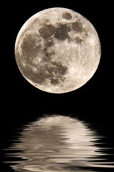 I want a full moon tattoo so bad. Just the moon. The moon and me. Moon Moon, Luna Moon, Moon Rise, Big Moon, Dark Moon, Full Moon Photos, Moon Pictures, Tattoos Infinity, Tattoo Mond