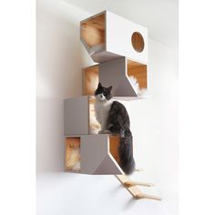 PRODUCTS :: FOR BREEDERS :: For cats :: Natural Catissa 4 storey cat house