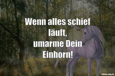 Wenn alles schief läuft, umarme Dein Einhorn! ... gefunden auf https://www.istdaslustig.de/spruch/940 #lustig #sprüche #fun #spass