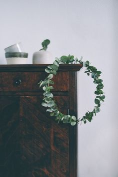 eucalyptus wreath / halo / crown