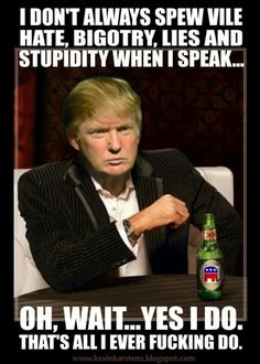 Image result for trump am more stupid than stupid