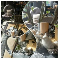 Spring in my home