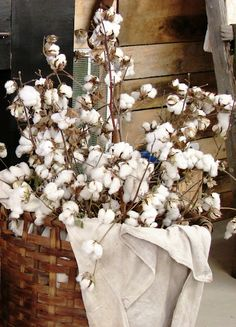 A cotton bouquet at The Country Farm Home blog. If you're a fan of old timey country life you'll love this blog. There's so much on it and so many great photos.