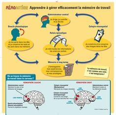 Enseigner aux enfants comment fonctionne la mémoire de travail Pour en savoir davantage: http://memoaction.com http://cheneliere.ca