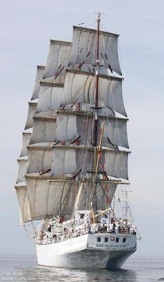 Dar Mlodziezy (Pools voor Gift van de jeugd) is een Pools zeilschip. Het schip, ontworpen door Zygmunt Choreń, werd gebouwd op de scheepswerf van Gdansk, waar het in 1981 te water werd gelaten.
