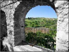 Blog tour a Vico del Gargano per un turismo sostenibile http://www.menasantoro.it/case-history/blog-tour-a-vico-del-gargano-per-un-turismo-sostenibile/