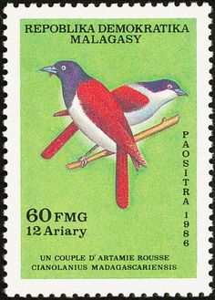 Rufous Vanga stamps - mainly images - gallery format