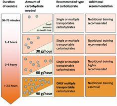 Carbohydrate Intake During Exercise.