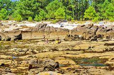Cambados Galice Espagne 220 - Illa de Arousa