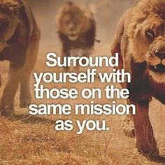 Morning. Surround yourself with those on same mission as you . . . #quotes #quote #quoteoftheday #quotestoliveby #quotestags #quotes #motivationalquotes #inspirationalquotes #quotestagram #quotesdaily #motivation #inspire #quotesoftheday #poetrycommunity #sayings #poetry #poems #love #life #sayingsandquotes #saying #quotation #positive #poetryslam #poemsporn #photoquote #livebywords #langleav #jesus #godisgreat