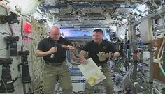 Thanksgiving in space: How space station astronauts get grateful - CSMonitor.com