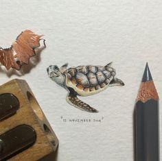 Cette artiste aux doigts de fée crée des dessins miniatures d'une précision époustouflante