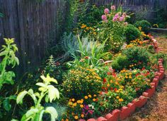 Hummingbird Garden--this is what I am doing for the sunny side yard--in memory of Doug!