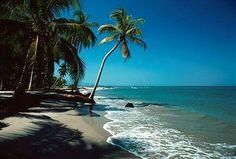 Playas de Tela .Honduras