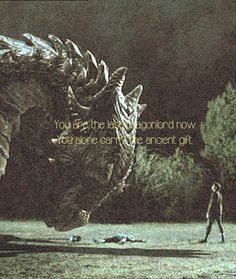You are the last dragonlord now. You alone carry the ancient gift.