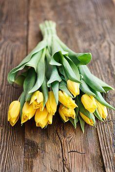 ✿⊱ Yellow tulips | Yellow wedding | Bridal jewellery | Bridesmaid Jewellery #EndoraJewellery