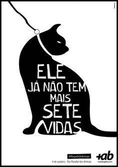 Portal MaisAB: World Day of Animals, Cat