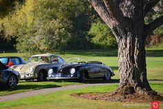 Porsche 356 Werks Reunion 2015
