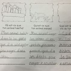 Creating imaginary animals! #frenchimmersion #teacherspayteachers #frenchtpt #animals #grade2 #grade2frenchimmersion Grade 2 Science, French Immersion, Classroom, Instagram Posts, Animals, Class Room, Animales, Animaux, Animal