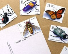 Insects And Spiders - Vintage unused postage stamps to post 5 postcards - or use in scrapbooking and crafts