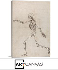 Ready-to-hang Study of the Human Figure - Lateral View Canvas Art Print for Sale canvas art print for sale. Free hanging accessories and insurance. Art Prints For Sale, Canvas Art Prints, Study, Studio, Investigations, Learning, Studying