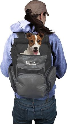 Outward Hound Gray PoochPouch Dog Backpack, Gray