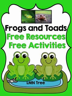 LMN Tree: Frogs and Toads: Free Resources and Activities - Animals Frog Activities, Spring Activities, Kindergarten Science, Preschool Lessons, Frog Theme Classroom, Classroom Ideas, Preschool Classroom, Tadpole To Frog, Reptiles Preschool